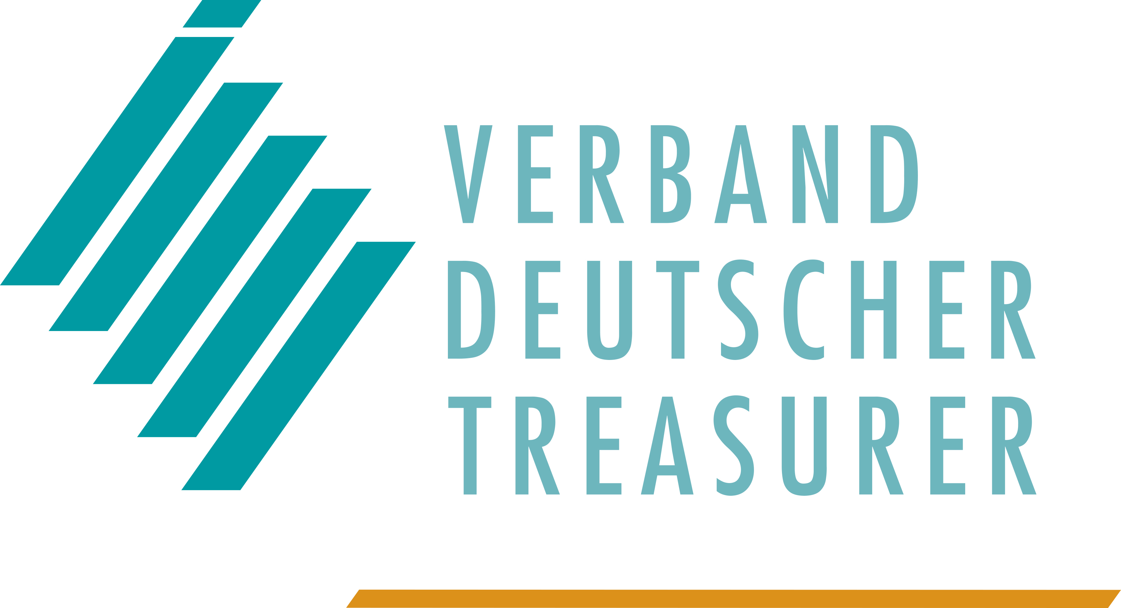 Verband Deutscher Treasurer e.V.